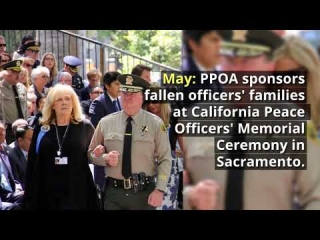 2017 Highlights of PPOA