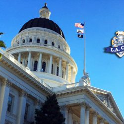 PPOA Public Safety Legislative Update: AB392